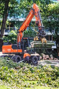 """Bij het """"opknappen"""" van het park in de Bossenbuurt worden veel bomen gekapt -  ZOETERMEER 19 SEPTEMBER 2017 2017 - FOTO NICO SCHOUTEN"""