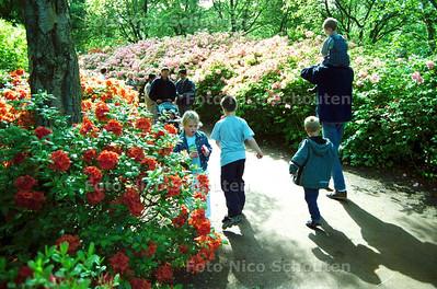 PINKSTERDRUKTE BIJ DE RODODENDRONS IN PARK CLINGENDAEL; DEN HAAG 19 MEI 2002; FOTO: NICO SCHOUTEN