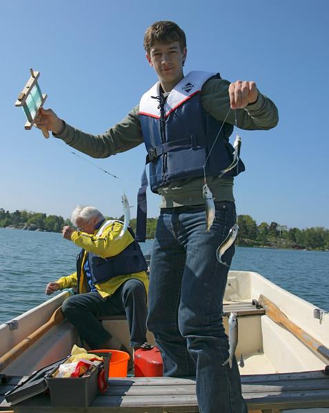 Fishing herring
