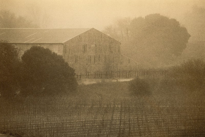 Napa in Fog, California