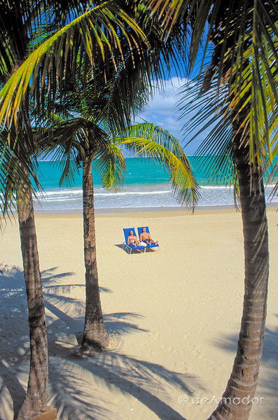 beach couple bet palmsV medamadorcomm©LOW