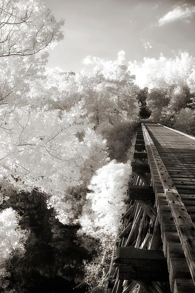 Strawberry Tressle - Glenwood, Arkansas
