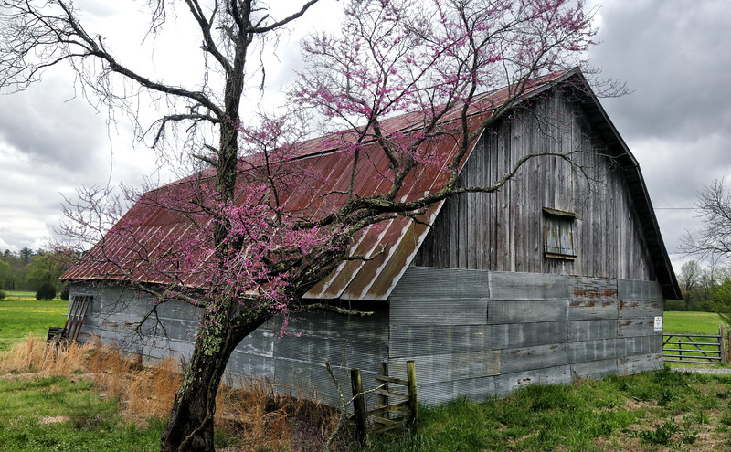 Country Architecture in Arkansas  - Spring 2020
