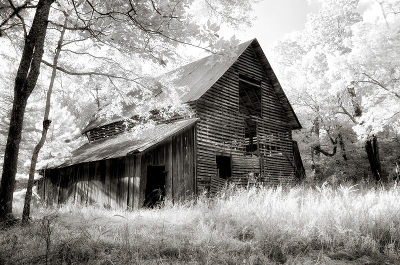 Moment in the Light - Ouachitas of Arkansas - Sept 5, 2016