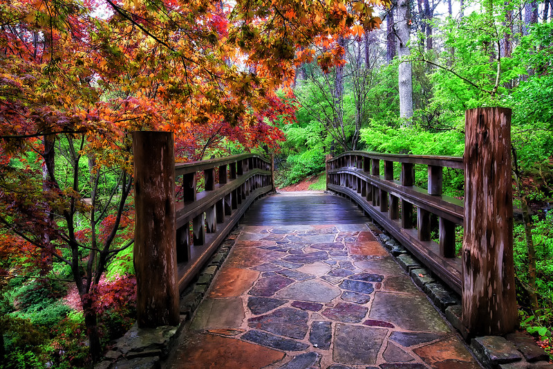 The Sunrise Bridge - Garvan Woodland Gardens - Hot Springs, Arkansas - A Rainy Day in April 2014