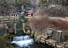 Trout Farm - Dogpatch USA - Jasper, Arkansas 2014