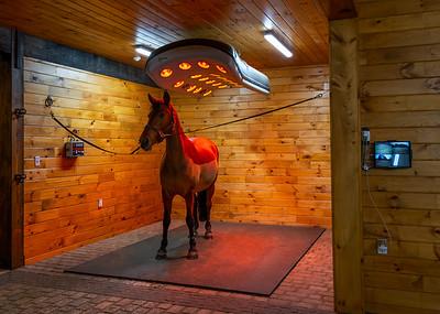 Iron Horse Heater