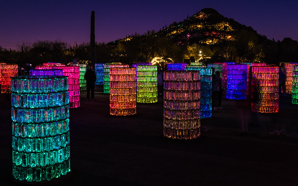 "Bruce Munro's ""Sonoran Light"""