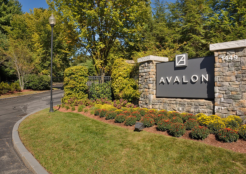 Avalon Bear Hill