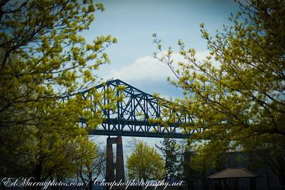 Bridging Two Trees