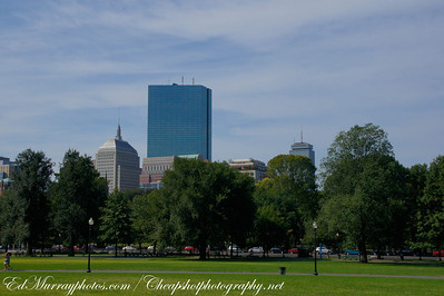 Skyline: Taken from the Boston Commom