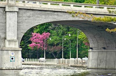 Bank Street Bridge - Rideau Canal, Ottawa, Ontario, Canada