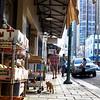 Cat walking down Chinatown sidewalk Honolulu Hawaii