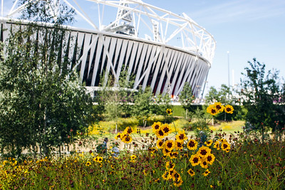 Queen Elizabeth Olympic Park, LDA Design