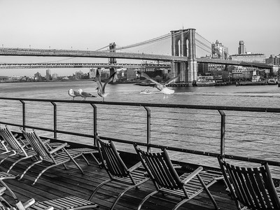 Deck Chairs and Brooklyn Bridge