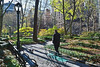 """""""Tudor City Greens""""<br /> A man takes a walk in the park on the East Side of Manhattan."""