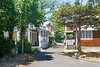 Oak Bluffs Street