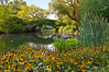 """Stone Bridge and Flowers""  A Summer view of the duck pond and stone bridge in Central Park in New York City."