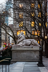 Library Lion at Dusk