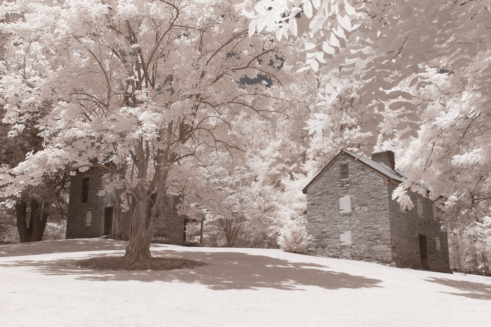 Oconee Station, Infrared