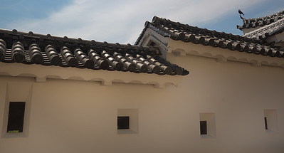 Himeji Castle Crow
