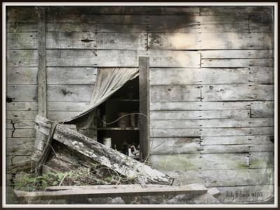 IMG_3483 barn door