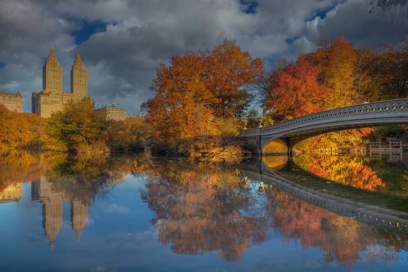 Fall Reflection In Central Park