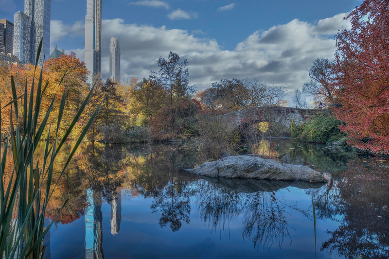 Capstow Bridge, Central Park