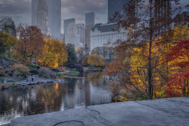 Plaza Hotel In Fall