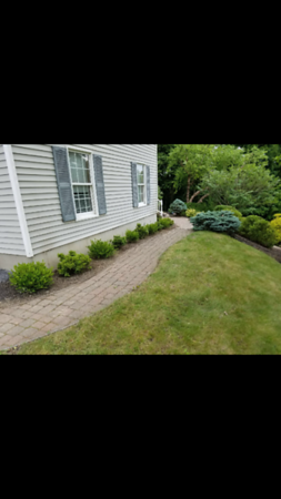 "2017- ""land scaping at rock ledge"