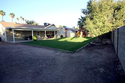Backyard-D
