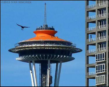 """URBAN LANDSCAPE"",Space Needle,Seattle,Wash.,USA."