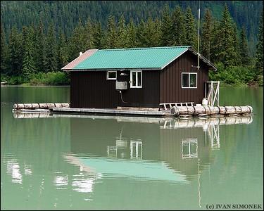 """""""HARMONY"""",Shakes slough,Alaska,USA."""