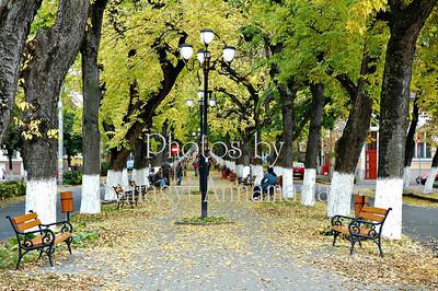 BOULEVARD  PARK - ROMANIA , TIRGU MURES - MAROSVASARHELY