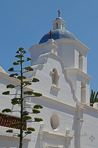 Mission Towers ~ San Luis Rey Mission in Oceanside, California.  I liked this view with the century plant in the foreground.