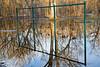 Spring Swings (flooded park)