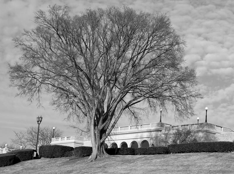 Ault Park, Cincinnati CB-070