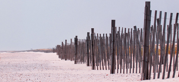 Dune Fence. Alabama State Park, between Gulf Shores and Orange Beach, Florida. Oly E330, ZD14-45 + EC14 Teleconverter.