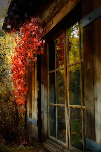 Sundance Autumn