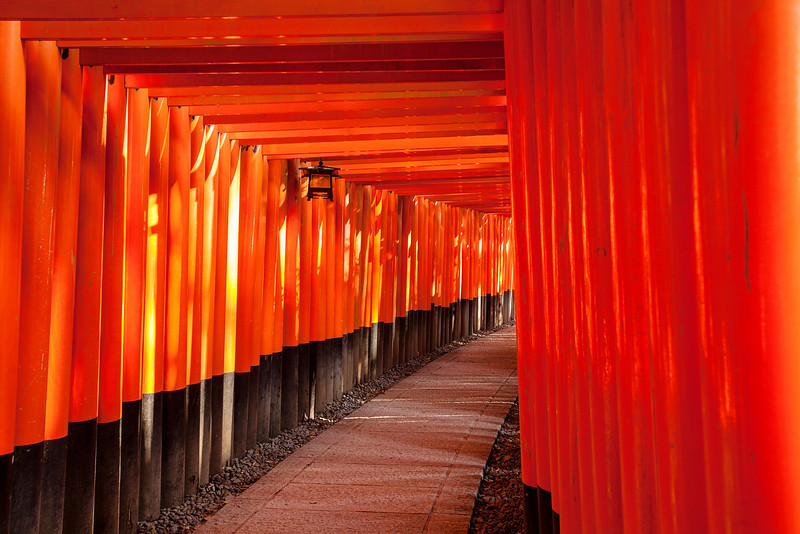 Path At Fushimi Inari Taisha