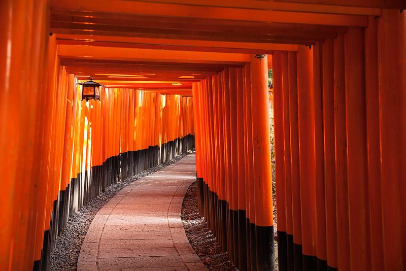 Path Through Torii Gates