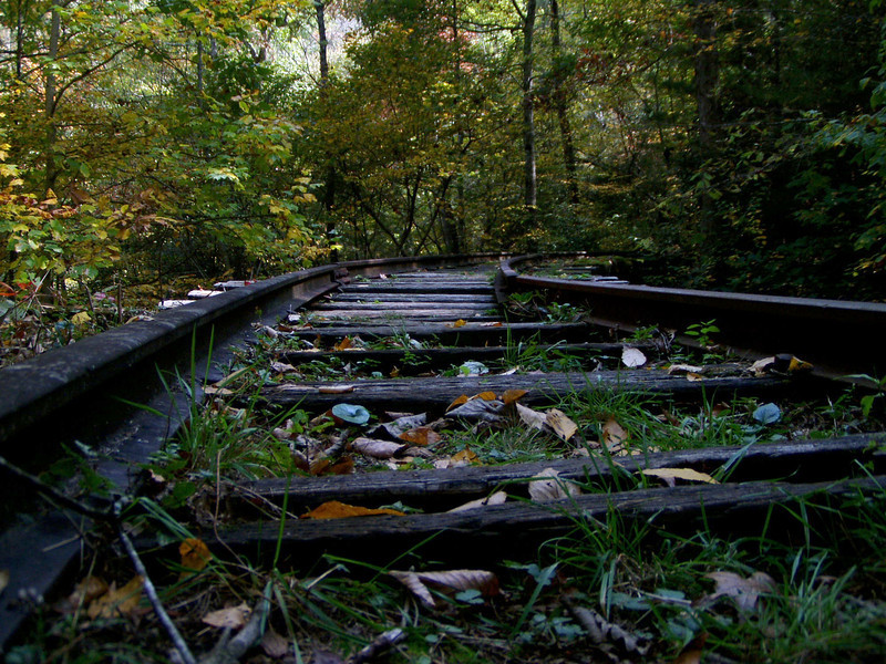 These long forgotten tracks leave you wondering the stories they once told. Where did the train go, what kind of people were on it, etc. History is always fascinating.