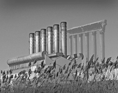 black & white photo of a car plant & Baalbek