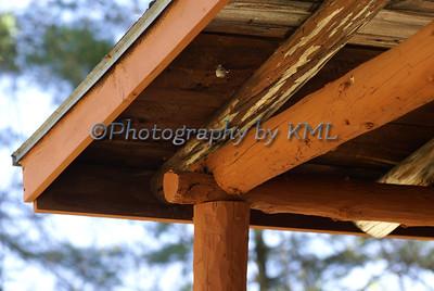 Cabin Roof Details
