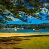 Seaforth, Sydney, NSW, Australia