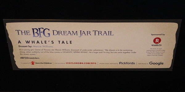 BFG Dream Trail<br /> 16 July 2016