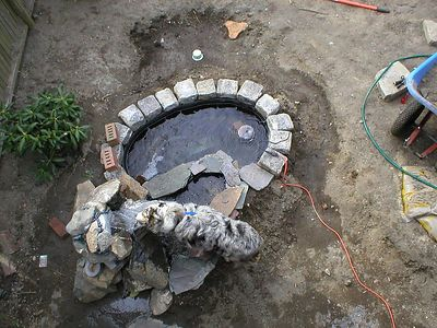 The fountain goes in.  waterfountain for the Matilda that is.