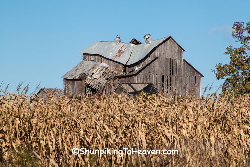 Dilapidated Barn, Sauk County, Wisconsin