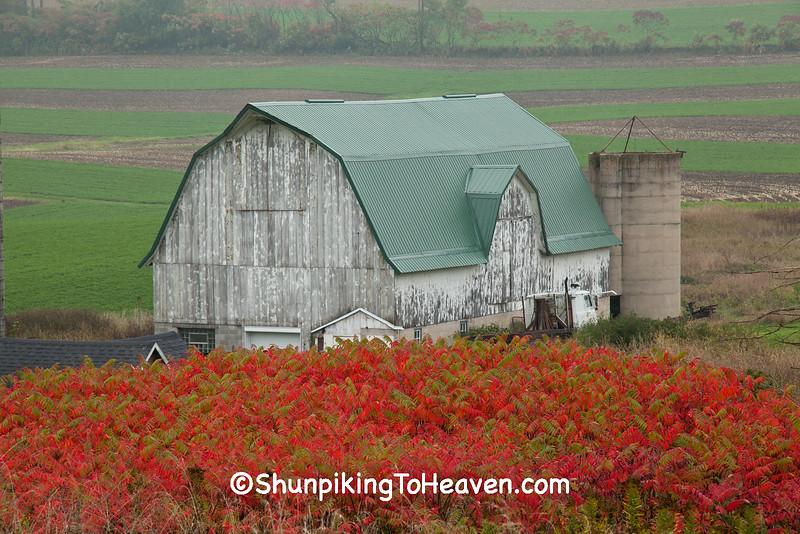 Autumn Farm Scene, Richland County, Wisconsin