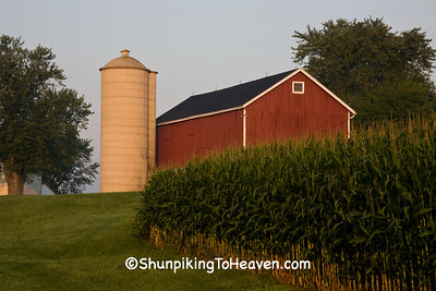 Early Morning Farm Scene, Dane County, Wisconsin